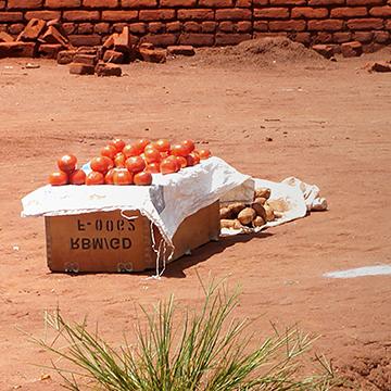 A box full of tomatoes